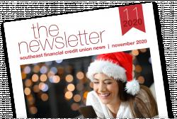 11 November Newsletter Image 2020
